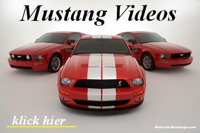 mustang-videos.jpg