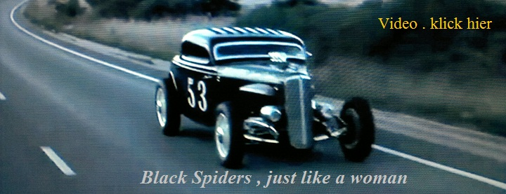 black-spiders-video.jpg
